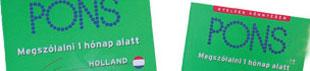 Goed Nederlands spreken lere Hongaren op de holland suli in haarlem